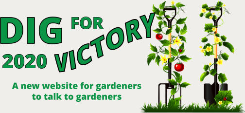 DIG FOR VICTORY 2020 A new website for gardeners  to talk to gardeners